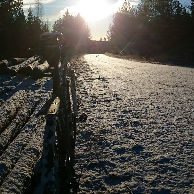 Snø er ingen hindring! Foto: Ole Jakob Håkonsen